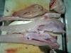Sameryouri0705041