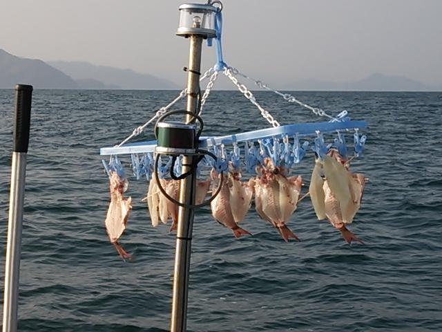 オリオン号鯛サビキ